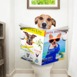 Best Indoor Dog Potty Picks for Large and Small Dogs with Reviews