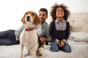 family and kid playing with beagle