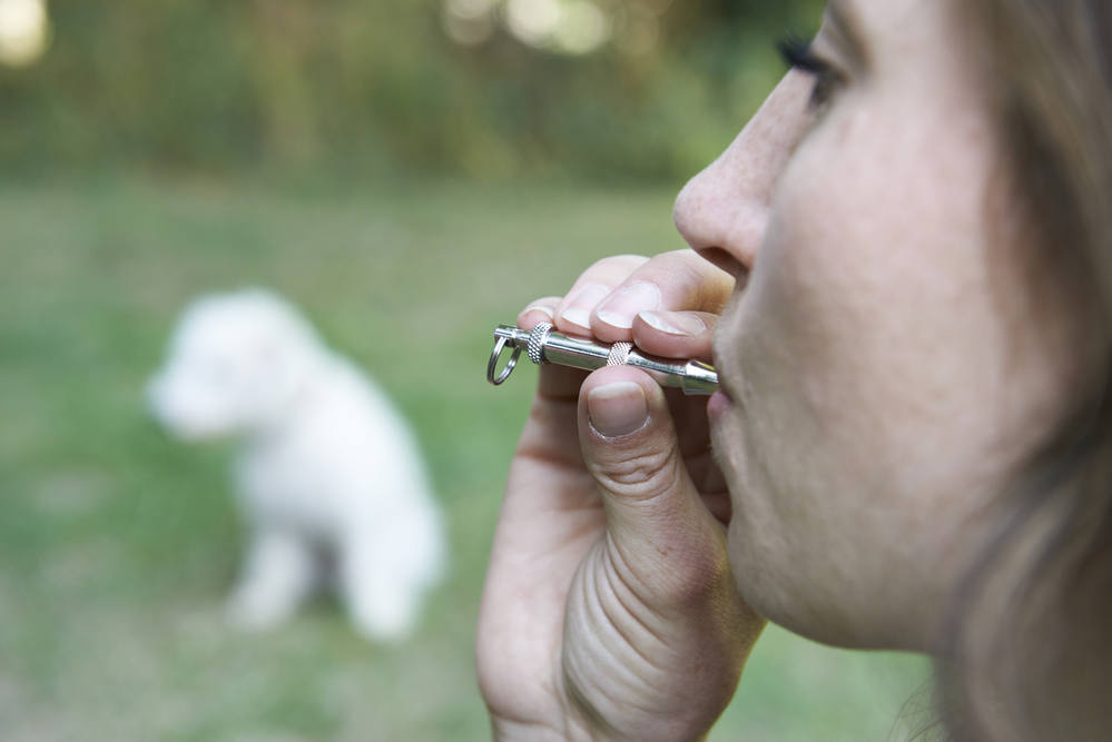 dog owner using a dog whistle