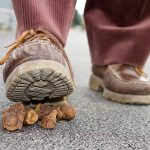 How to Clean Dog Poop Off Shoes