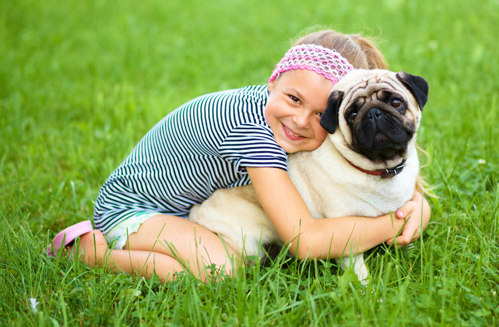 Pug sitting in grass with little girl