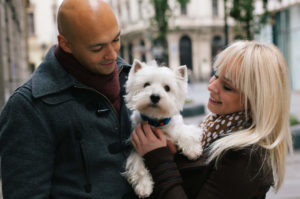 Westie with first time dog owners