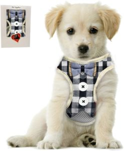 Bark Lover Small Puppy Harness with Bowtie