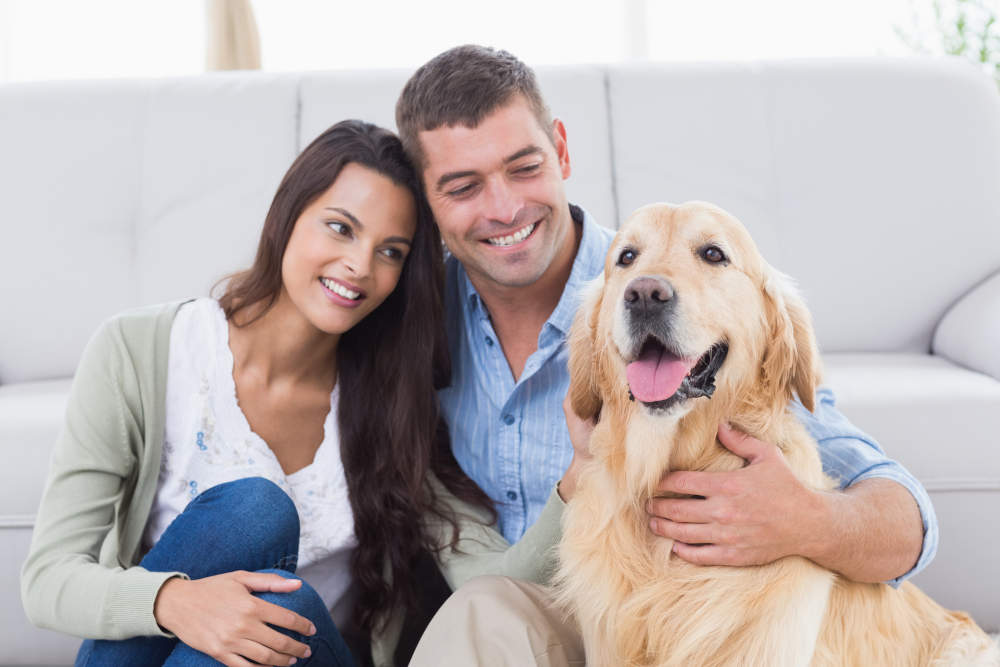 Happy couple with their new Golden Retriever