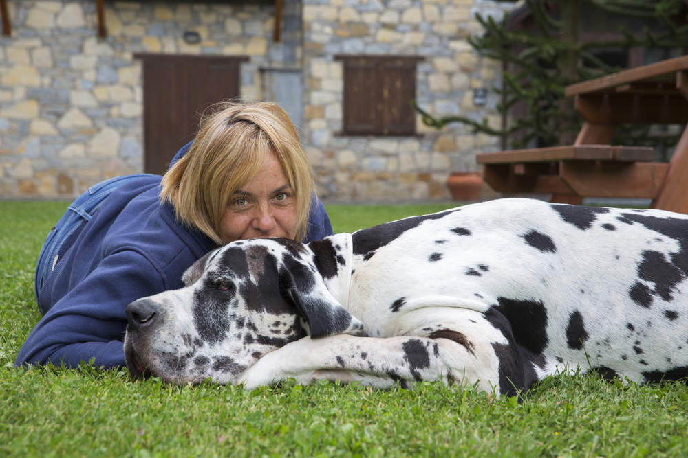 Owner with Great Dane on the grass
