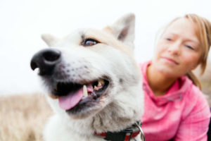 Akita with owner