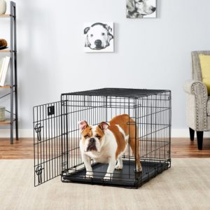 MidWest LifeStages Single Door Dog Crate